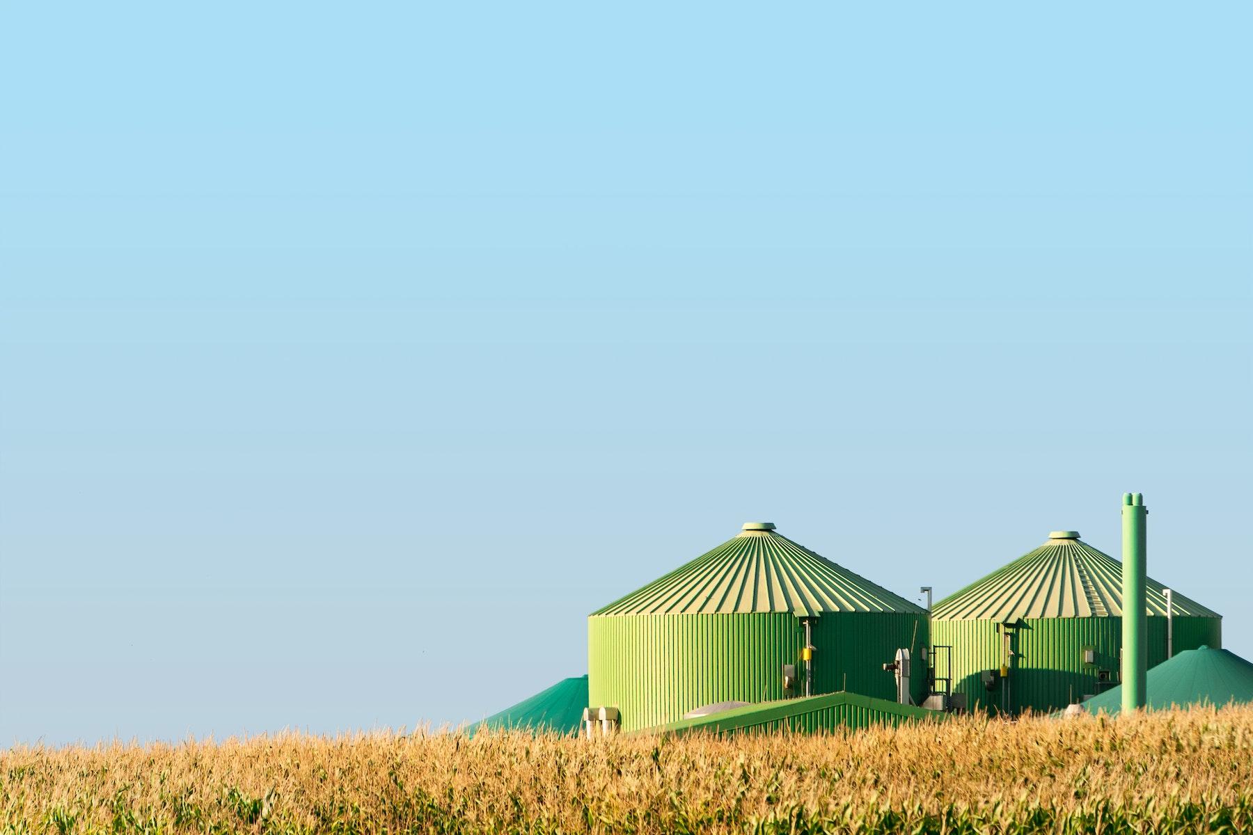 Bioenergy Jpg