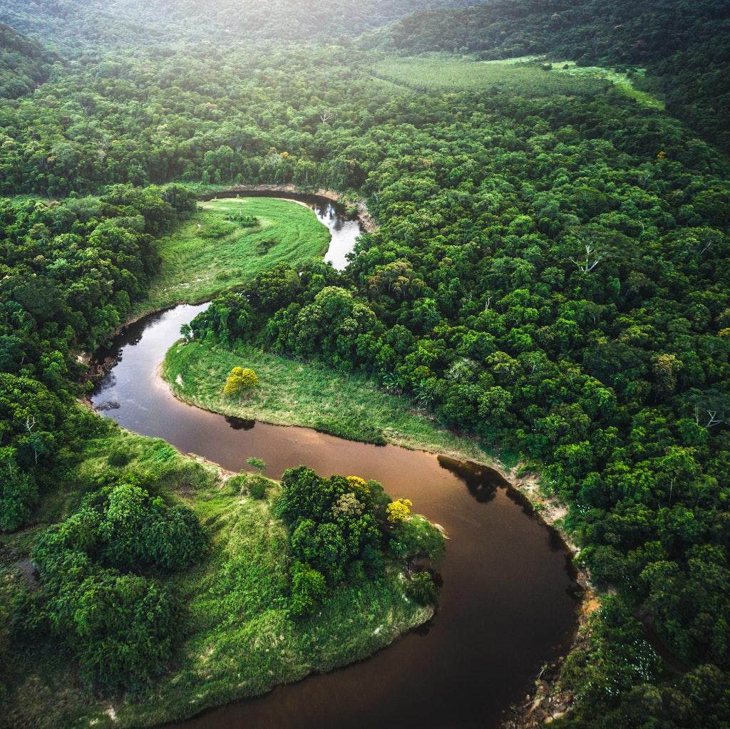River running through a forest