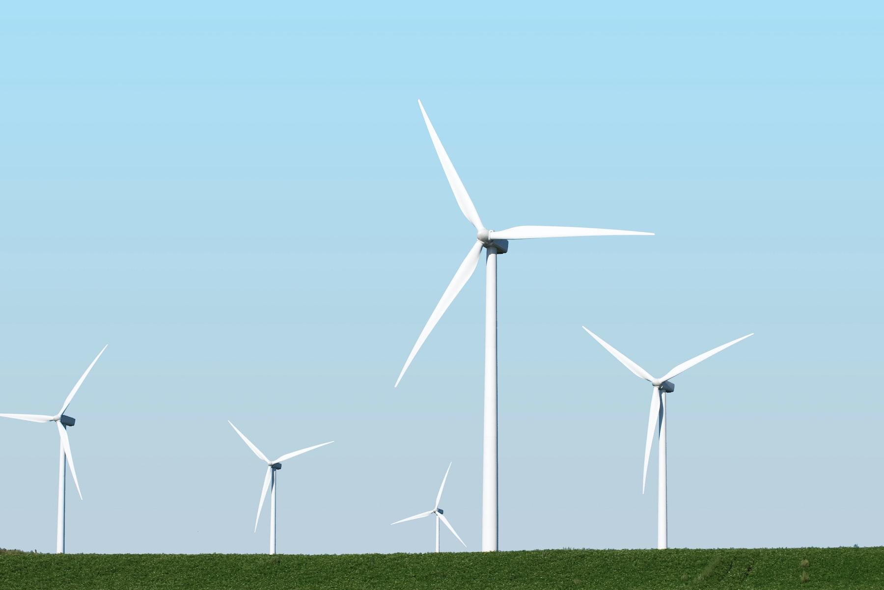 Wind Tall